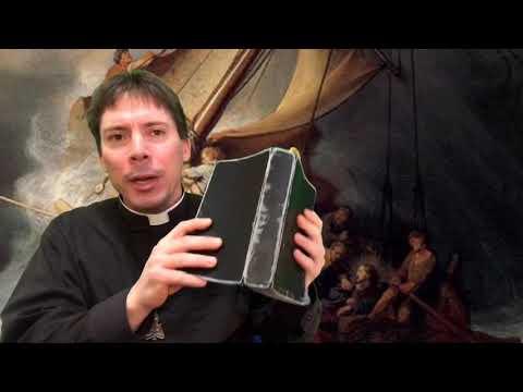 The Chastisement: BE NOT AFRAID! - Fr. Mark Goring, CC