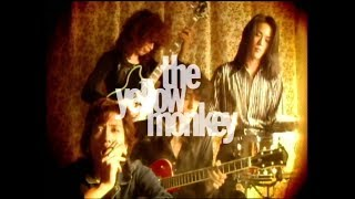 THE YELLOW MONKEY – 追憶のマーメイド