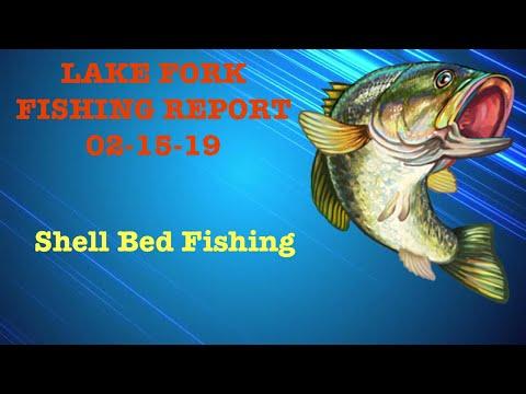 Lake Fork Fishing Report 02-15-19 (Shell Bed Fishing On Lake Fork)