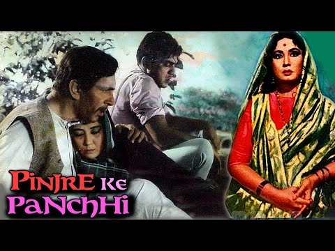 Pinjre Ke Panchhi (1966) Hindi Full Movie | Balraj Sahni, Meena Kumari | Hindi Classic Movies