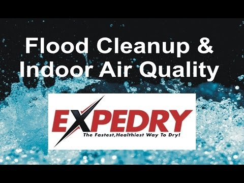 flood-cleanup-and-indoor-air-quality-by-expedry