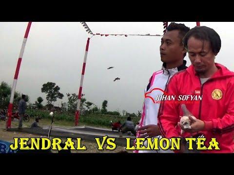 DETIK DETIK KEKALAHAN JENDRAL OLEH LEMON TEA ; PADEL CUP 2 LOMBA Nasional HADIAH MOBIL