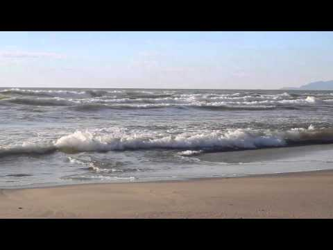 "✶* ¸ .✫.•°*""˜˜""*°•.Seashore.•°*""˜˜""*°•.✶* ¸ .✫"