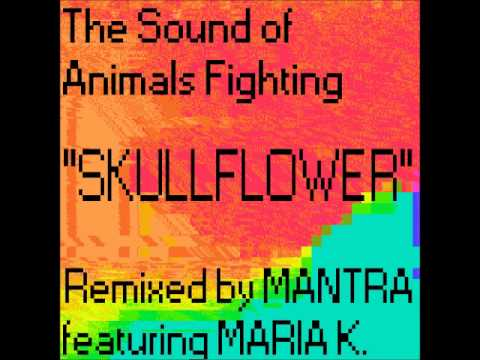 The Sound of Animals Fighting - Skullflower (Mantra Remix feat. Maria K.)