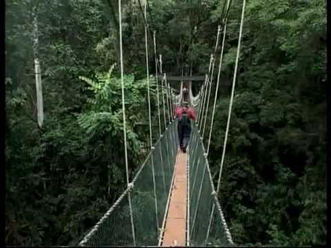 MALAYSIA: Enchanting Nature