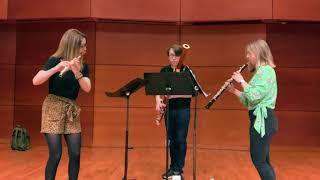 Brushstrokes for flute, oboe, and bassoon, IV. Pollock (Alyssa Morris)