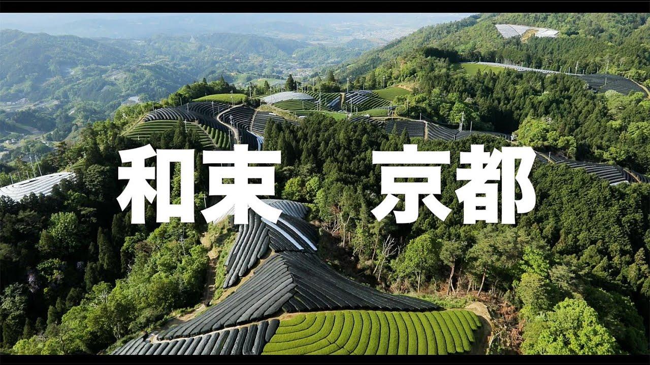 【空の旅#87】「茶畑は山の上にもあるんだね」空撮・多胡光純 和束_Kyoto aerial