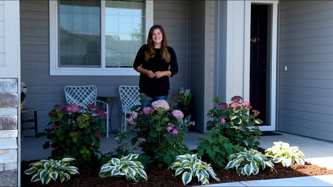 planting-a-front-garden-bed-for-a-friend-garden-answer