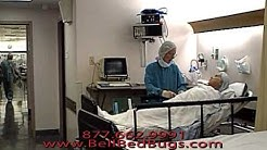 Treat Bedbugs in Hospitals and Healthcare Facilities