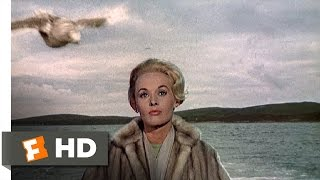 The Birds (1/11) Movie CLIP - Seagull Attack (1963) HD