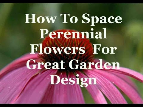 How To Space Perennial Flowers For Great Garden Design YouTube