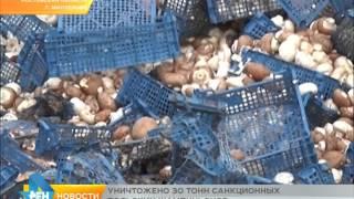 Уничтожено более 30 тонн польских шампиньонов