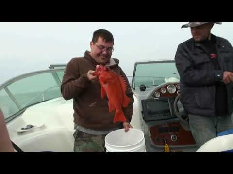 Sculpins fishing in orange county deep sea fishing youtube for Fishing in orange county