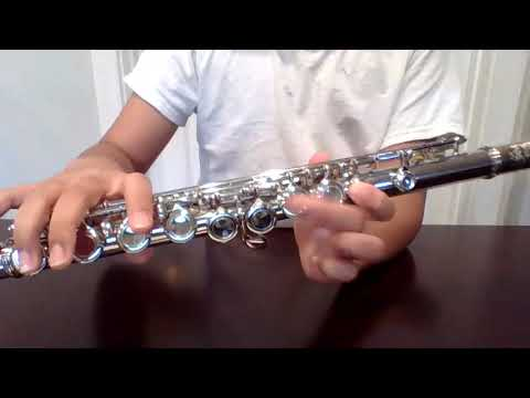 Assembling your flute and how to clean it.