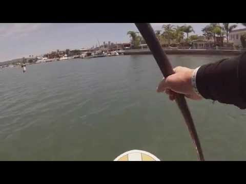 Stand Up Paddle Boarding SUP in Newport Beach