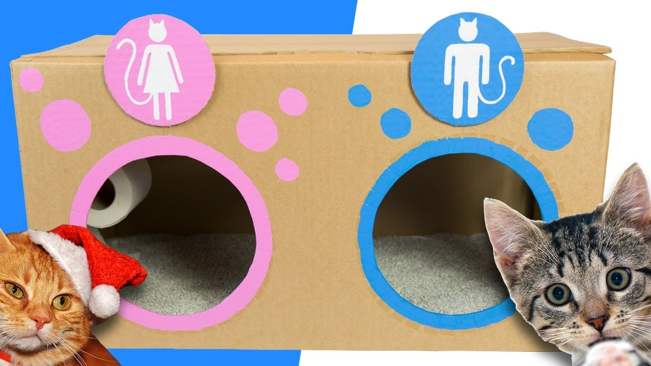The Cat Toilet Collection Diy Cardboard Crafts For Kids Youtube