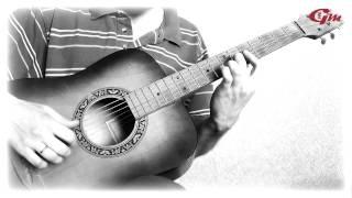 В мире животных. На гитаре. Урок 6. Финал