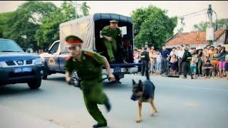 Có Lẽ Đây Là Phim Hình Sự Việt Nam Hay Nhất - Phim Kinh Điển Về Phá Án Đại Ca Giang Hồ