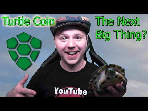 TurtleCoin The Next Big Thing? | Crypto Updates and More