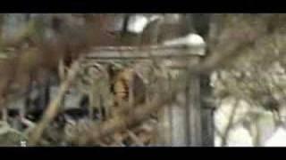 к\ф Усатый нянь - Первый день. музыка Рыбникова А.
