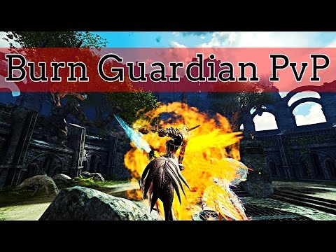 Guild Wars 2 - Burn Guardian PvP thumbnail