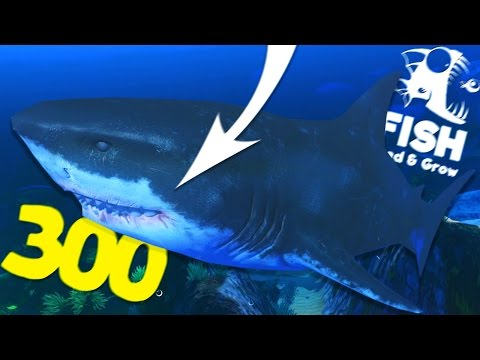 Ogromny lvl 300 megalodon feed and grow fish for Feed and grow fish free download full game