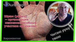 Коррекция Линии жизни. Шрам (рубец) на ладони. Хиромантия от Владимира Красаускас
