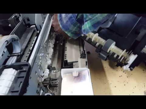 paper not loading epson l805 - cinemapichollu