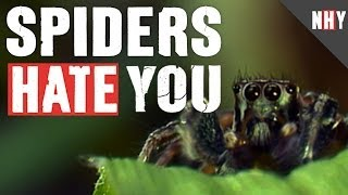 SPIDERS HATE YOU!