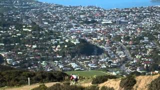 Showcase: This is Our Wellington thumbnail
