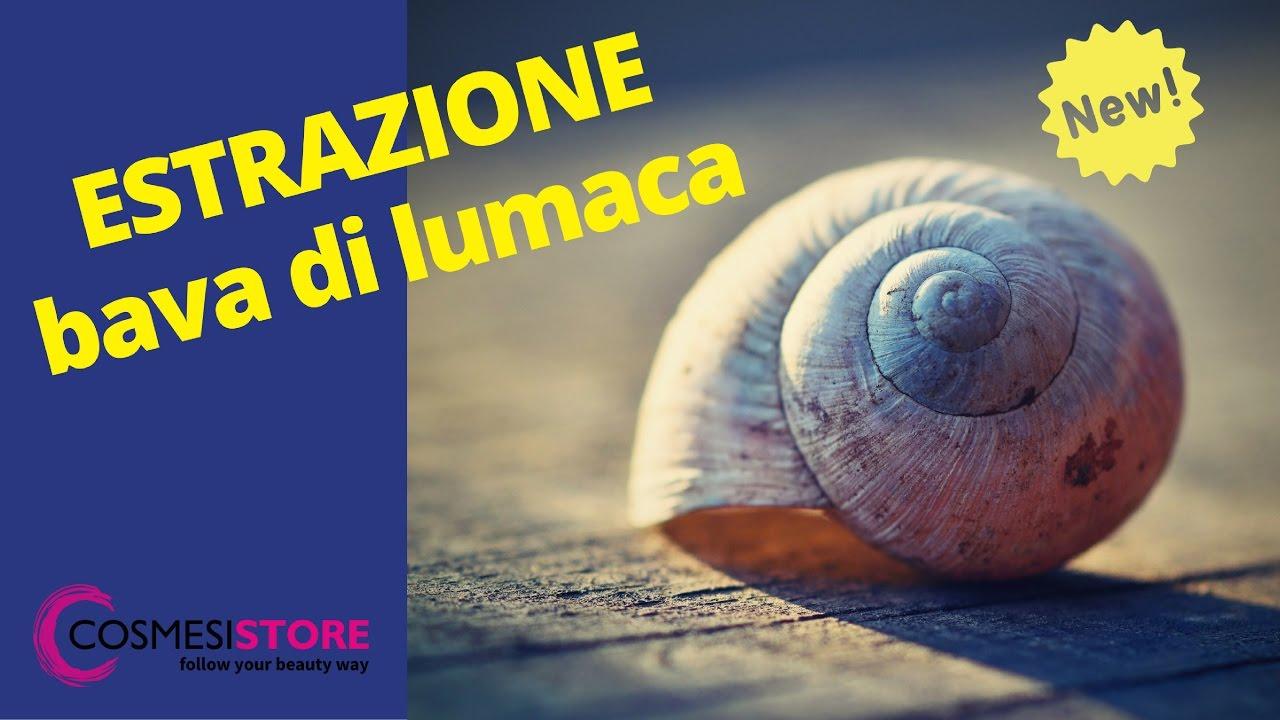 estrazione bava di lumaca naturale biologica italiana