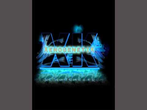 Sebastian Brandt vs Katy Perry - Ignite the Ashes (XenogenetiK's Fireworks Finale Mash-up)