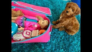 American Girl Mystery Room ~ 8 Week Old Puppy Challenge!
