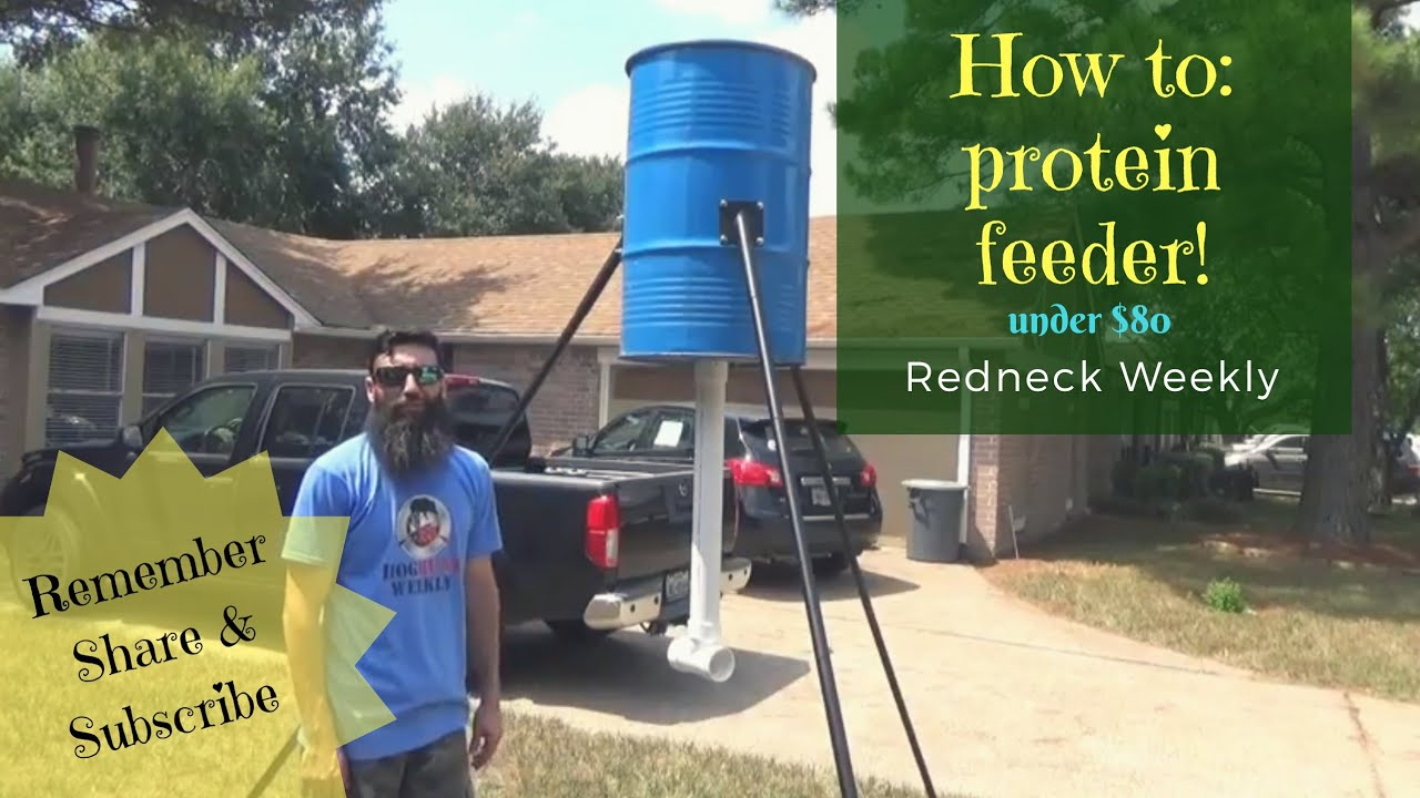 how to build a 55 gallon drum protein feeder Cheap!! under $80