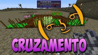 MINECRAFT Regrowth EP 2 Cruzamento de flores e Seed analyzer