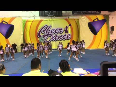 •Cheer sec.16•  Municipal 2015