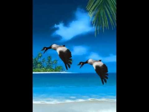 peisaje exotice 3d - photo #35