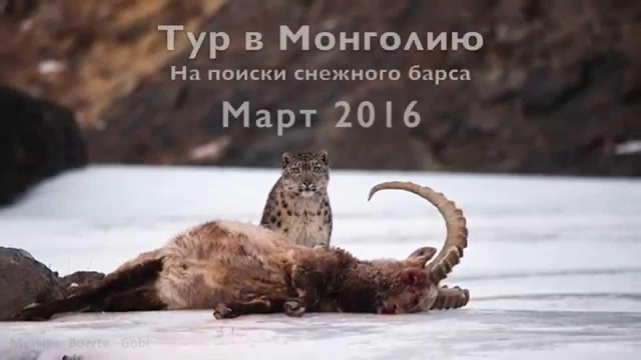 Тур в Монголию - для самых сильных и смелых!