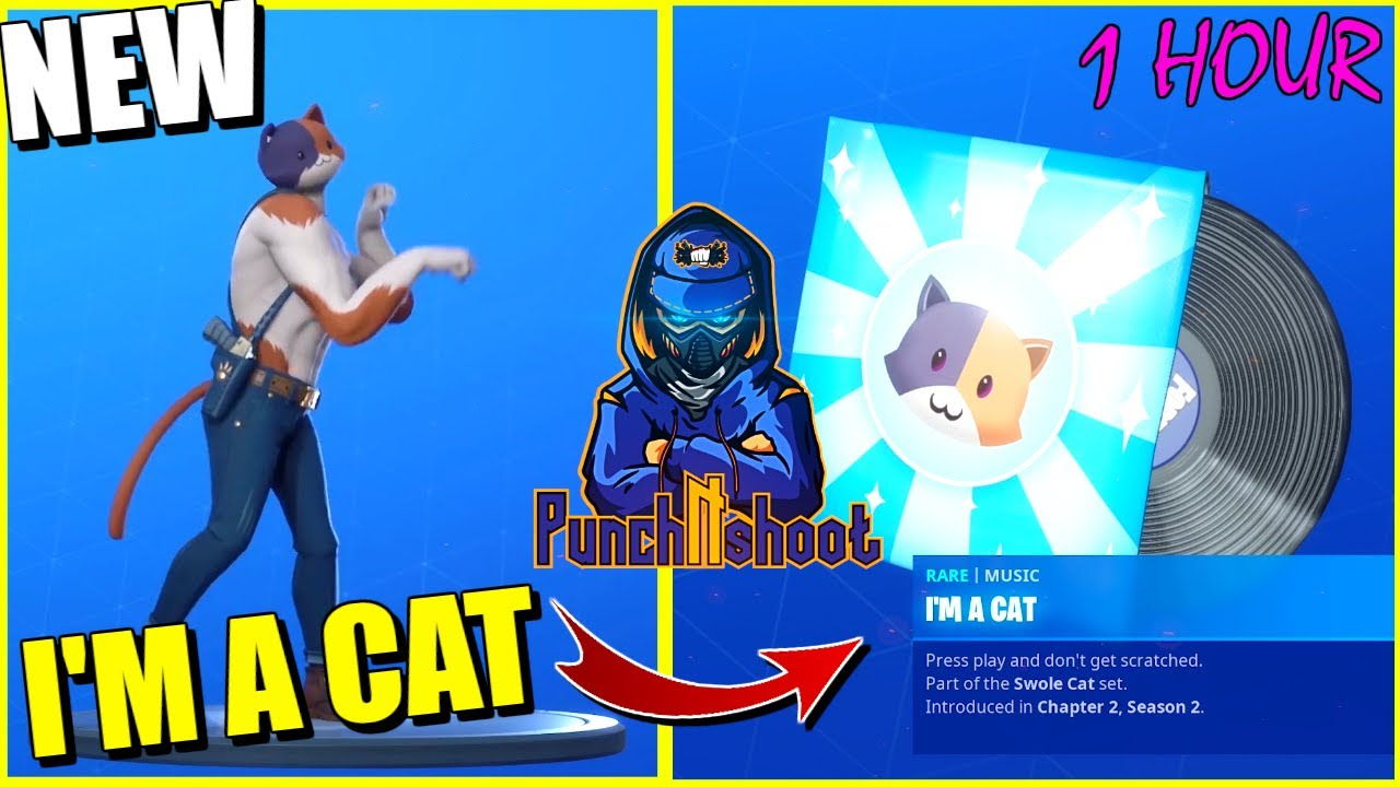 Fortnite I M A Cat Kitty Cat Song 1 Hour Youtube