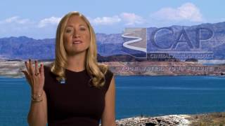Protect Lake Mead PSA :15