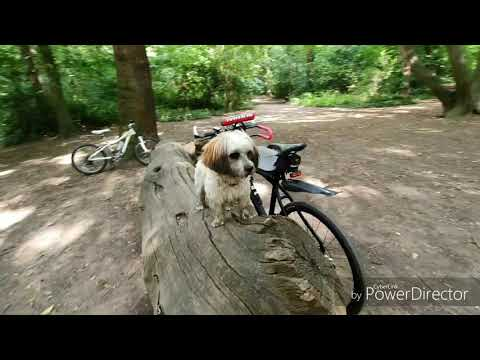 small-dog,-puppy-cycle-carrier!