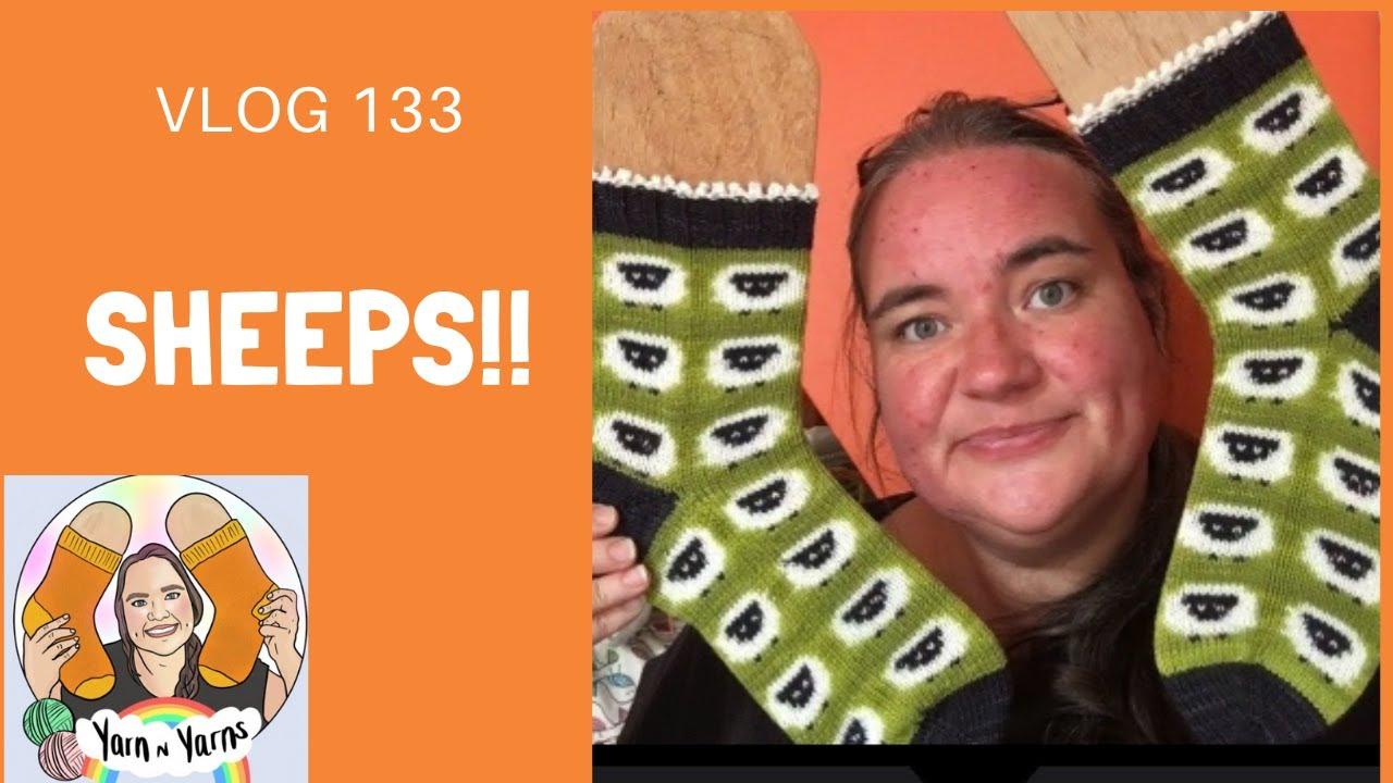 Vlog 133: Sheeps!!!