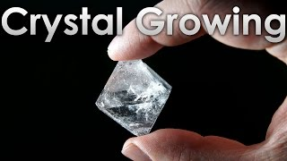Learn how to grow a beautiful single crystal of salt at home!