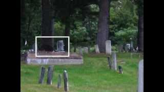 A Paranormal Investigation at Greenwood Cemetery.
