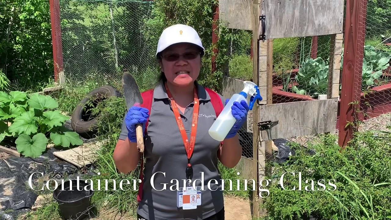 Container Gardening Wellness Class