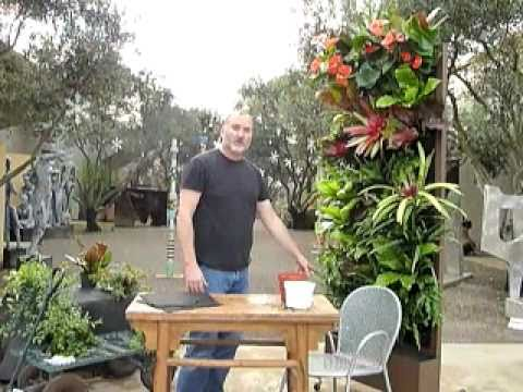 Decorating with plants - Living wall installation