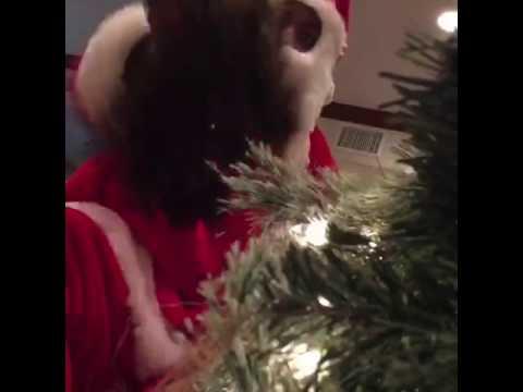 Santa delivers no matter what By Destorm power