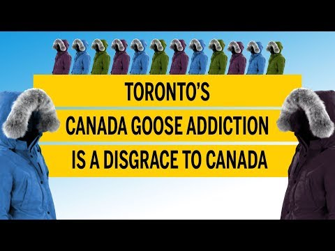 Toronto's Canada Goose Addiction Is A Disgrace To Canada