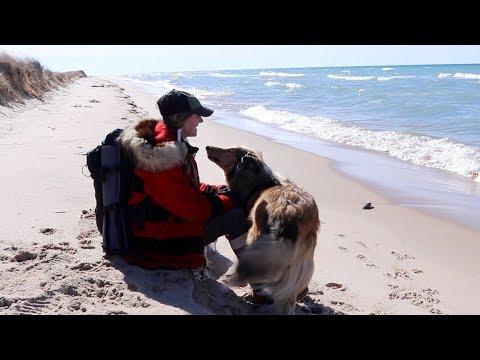 Winter Dunes Hike with my Dog at Lake Michigan