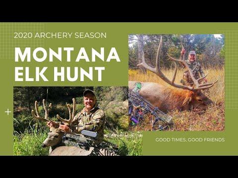 Montana Archery Elk Hunt 2020